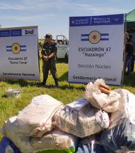 Incineraron más de 40.000 kilogramos de marihuana incautada en la región