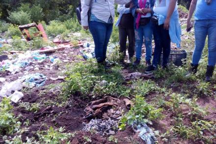 restos humanos en el campo.jpg
