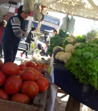 Podrían escasear tomates en Corrientes tras las últimas heladas