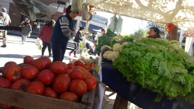 verduras 1.jpg