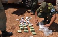 Video: Gendarmería incautó pesos y dólares transportados ilegalmente