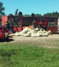 Entre Ríos: se secuestró el cargamento de drogas más importante de la historia en la Provincia