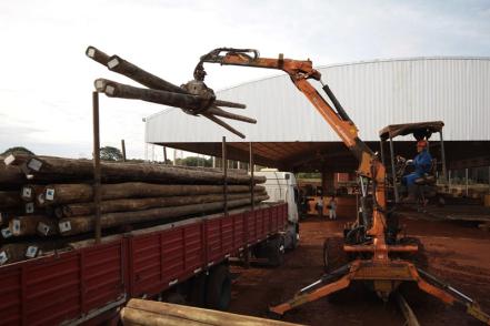 Corrientes-forestoindustria.JPG