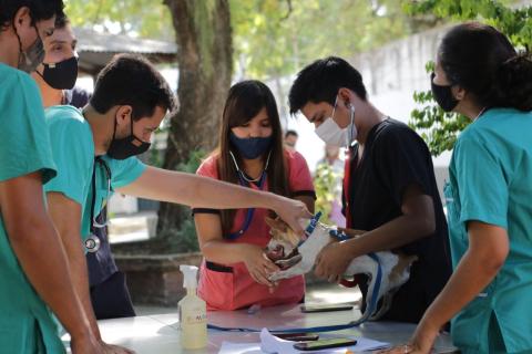 La UNNE mantiene los cupos de su programa de becas estudiantiles en el Ciclo 2021