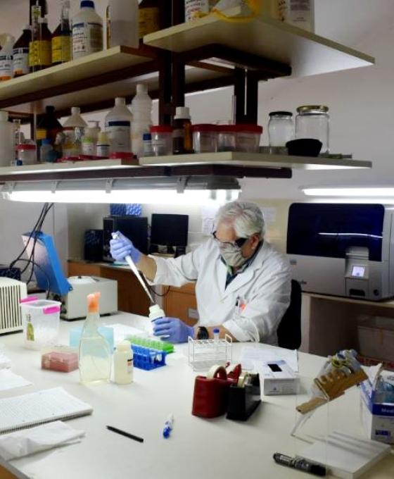Otras 470 personas murieron y 12.027 fueron diagnosticadas con coronavirus en el país