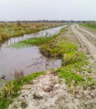 Enripian los caminos rurales afectados por las crecidas y tormentas