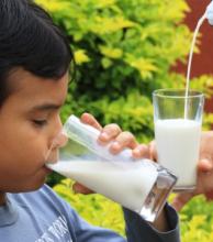 También en Corrientes, alarma la baja en el consumo de leche