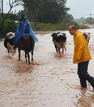 Inundaciones: anuncian remate para salvar hacienda