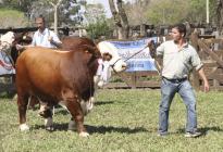 Los ganaderos correntinos piden la concreción de un plan hídrico provincial