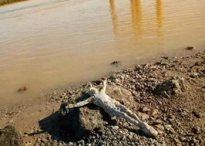 cristo del rio.jpg